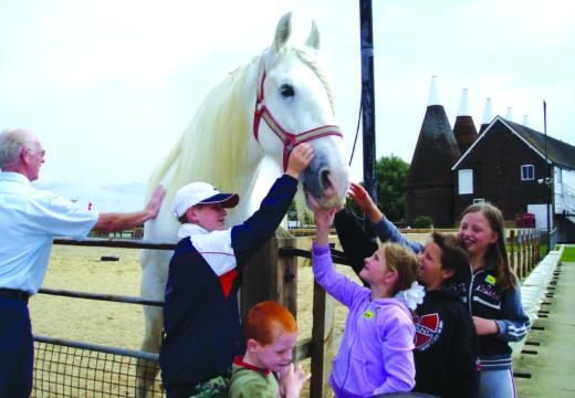 South East Equestrian Show 2016